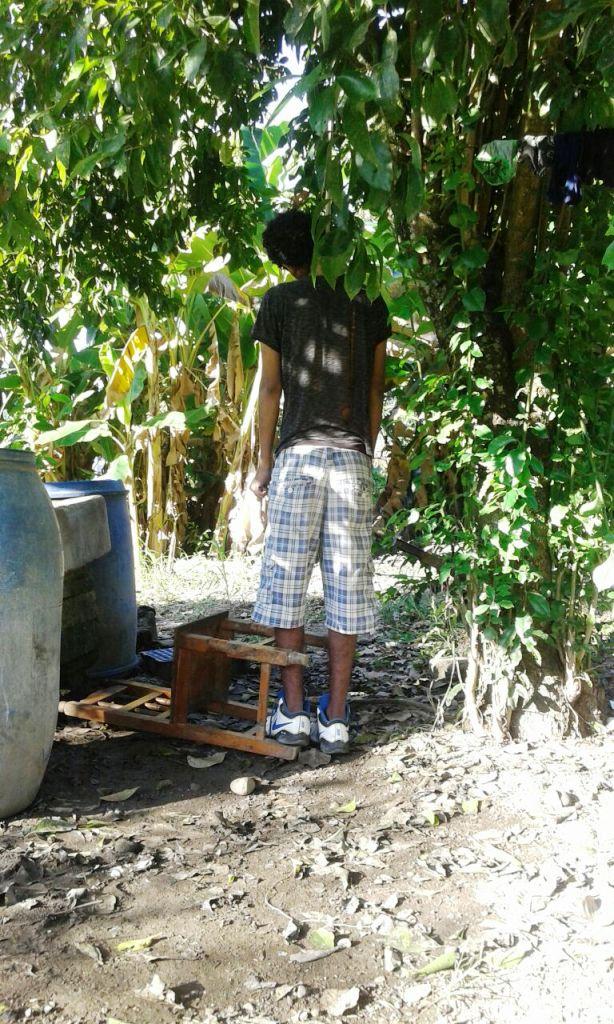 Joven se ahorca en un árbol a la orilla de la calle