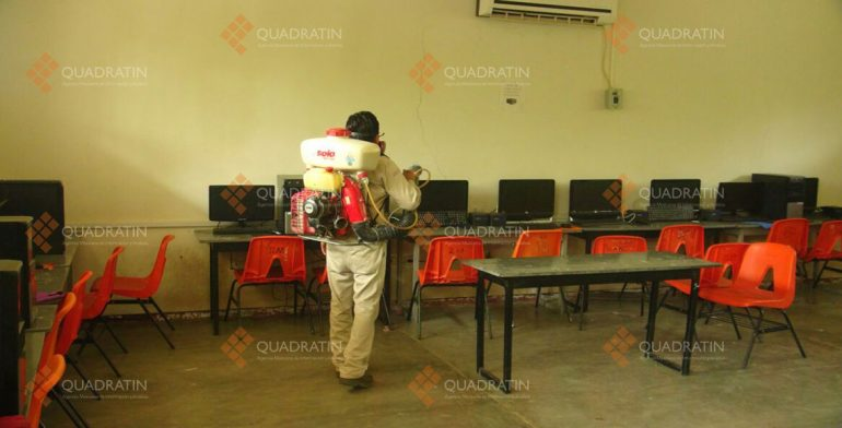 Reportan plaga de pulgas y garrapatas en escuela de Juchitán