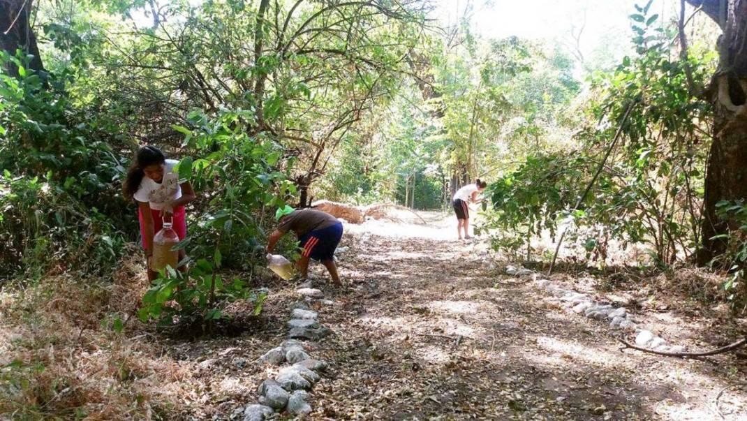 Zanatepec, cinco años contra la minería