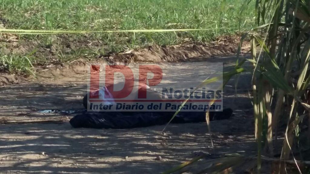 Localizan cadáver cerca de la Reforma