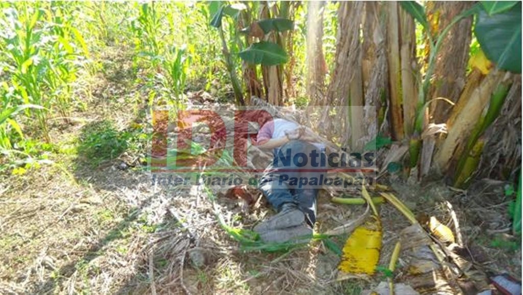 Encuentran un ejecutado en San Miguel Soyaltepec