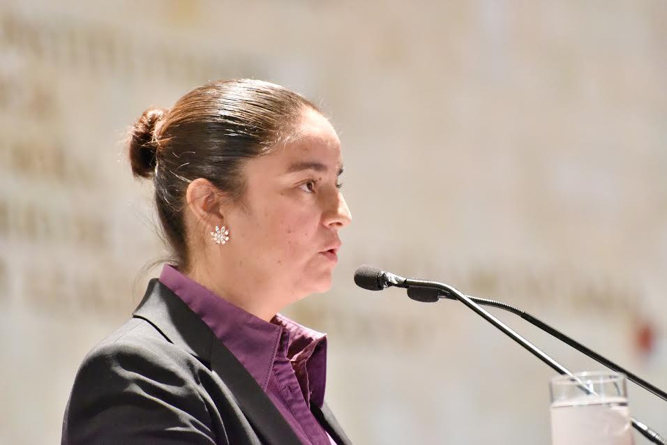 Propone Rosa Elia Romero fortalecer Ley de Ciencia y Tecnología