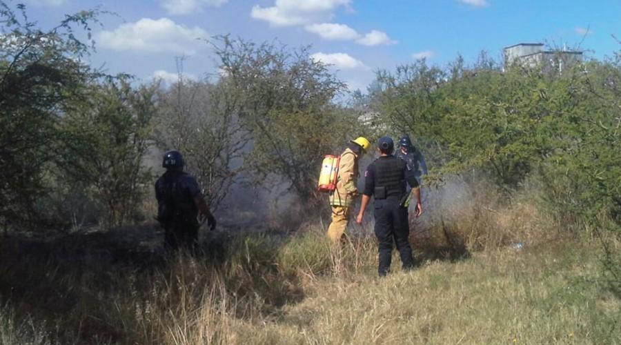 Brigadistas de México llegan a Chile, a los Chimalapas no