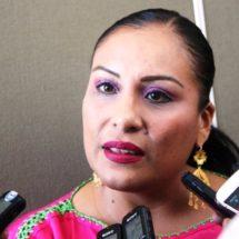 Diputada Federal Karina Barón entrega 70 luminarias para Benemérito Juárez