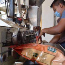 Café orgánico zapoteca, de Oaxaca para Europa