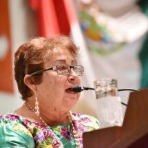 Necesario evitar la participación de la  niñez en protestas sociales: Virginia Calvo