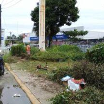 Continúa Gobierno Municipal limpieza de bulevares