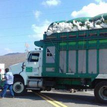 Exigen elecciones en agencias de Juchitán