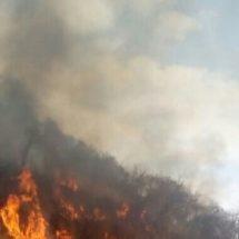 Incendio afecta más de 10 mil hectáreas