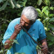 De albañil a buscador de cadáveres: el padre que encontró la mayor fosa clandestina de México