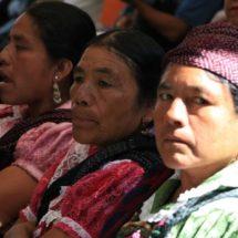 Niegan traductores para indígenas oaxaqueños en procesos penales