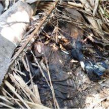 Localizan cadáver putrefacto en Buena Vista Rio Tonto