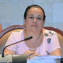 Propone diputada Silvia Flores agilizar pensión  alimentaria provisional para infantes y adolescentes