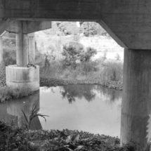 Salvar el río Los Perros, el clamor del Istmo