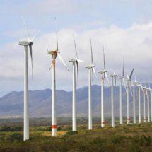 Llega nuevo parque eólico a Oaxaca; invertirán 500 mdd en el Istmo