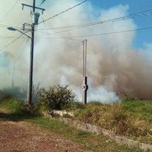 Consume fuego 10 hectáreas de pasto