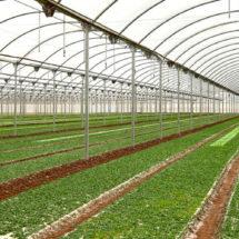Contará Oaxaca con un Agroparque