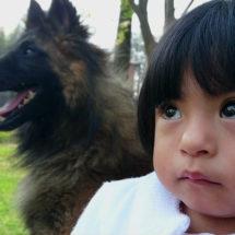 Los niños con mascotas tienen menos riesgo de alergias y obesidad