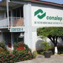 Instituciones educativas de CONALEP del estado de Oaxaca festejarán al medio ambiente sembrando arbolitos.
