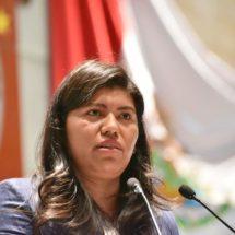 No hay cabida para la elaboración de leyes  improvisadas en la 63 Legislatura: Hernández García