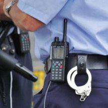 Senadores urgen profesionalizar policías para frenar crímenes