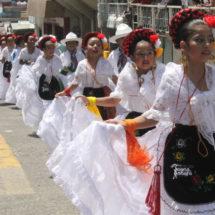 Fiesta jarocha en el centro de Huatusco