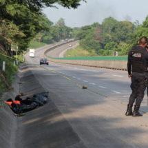 'Embolsado' sobre la autopista Córdoba-México