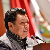 Pide José Esteban Medina esquema de rescate de producción de alebrijes