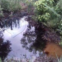 Grave derrame de Pemex en Guichicovi, Oaxaca; sin atención pese a denuncias
