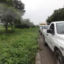 Inician campaña contra dengue en Tehuantepec