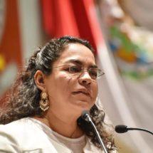 Laura Vignon propone proteger palmeras  y arbolado de la Ciudad y Municipios conurbados