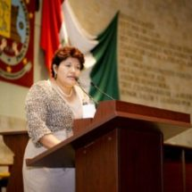 Diputada Neli Espinosa, pide la participación de autoridades municipales, sectores sociales y académicos en Consejo para el Fondo Metropolitano