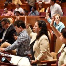 Laura Vignon trabaja en beneficio de los 570 municipios
