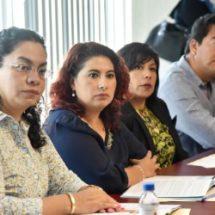 """""""Trabaja PRD en análisis de ordenamientos del Sistema Estatal Anticorrupción"""": diputada Eva Diego"""