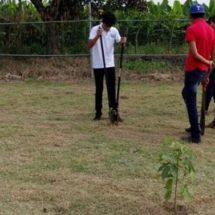 ¡Vamos a sembrar vida!; supervisa Anilú Delfín zona reforestada en Rastro TIF