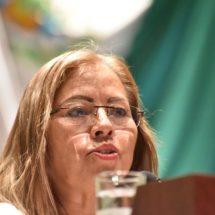 Propone diputada Marichuy Melgar garantizar el derecho humano de acceso y disposición del agua