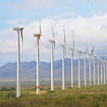 Ofreció Gobierno de Oaxaca 24 mdp a cambio de desaparecer impuestos a eólicas en Juchitán