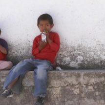 Más de 210 mil indígenas son beneficiarios de Liconsa