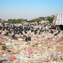 Niegan contaminación al medio ambiente