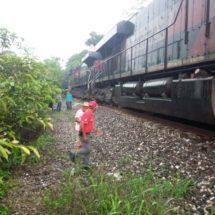 Mata tren a septuagenario