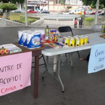 Jóvenes Tuxtepecanos que estudian en Puebla instalan centro de acopio en parque Juárez