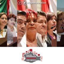 Propone Morena Consejo Ciudadano