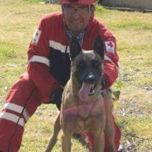 Rescatistas de CDMX solicitaron el apoyo de Balto, el perro rescatista de Oaxaca