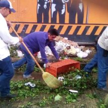Instrucción de Bautista Dávila, mantener buena imagen de parques y jardines