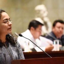 Presenta Diputada Laura Vignon Carreño y el Diputado Manolo León Sánchez punto de acuerdo sobre la regulación de Estacionamientos Públicos.