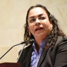Laura Vignon propone asegurar la pensión a la familia de trabajadores enfermos