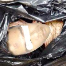 Localizan cadáver descuartizado en carretera a Cosamaloapan