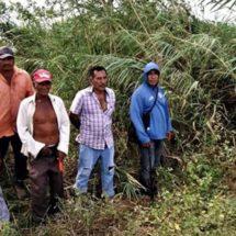 Retoman limpieza del río Los Perros en Juchitán, Oaxaca