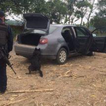 BINOMIO CANINO DE LA POLICÍA ESTATAL SORPRENDE A SUJETO QUE OCULTABA CUATRO PAQUETES DE MARIHUANA