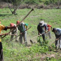 Autoridades de los 3 niveles olvidan al sector campesino